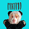 Maymo | Funny Lemon Beagle Dog Videos