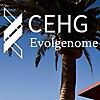 The CEHG blog