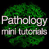 Pathology mini tutorials