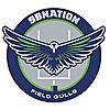 Field Gulls | Seattle Seahawks community