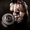 Collegiate Muscle