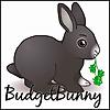 BudgetBunny | Pet Vlogger