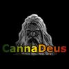 Actualité CannaDeus