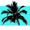 Thank You Miami | Miami Fashion, Food & Lifestyle Blog