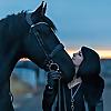Vivacious Equestrian