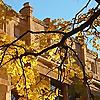 University of Washington   Department of Sociology