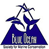 Blue Ocean | Society for Marine Conservation