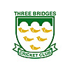Three Bridges Cricket Club