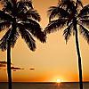 Go Visit Hawaii   Hawaii Travel Guide & Vacation Advice