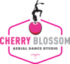 Cherry Blossom Aerial Dance Studio