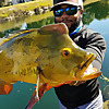 Monster Mike Fishing   Florida Fishing Channel