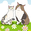 Pastel Cat Diary
