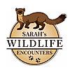 Sarah's Wildlife Encounters