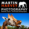 Wildlife of Africa | Wildlife and Travel Photography