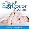 The Egg Donor Program | Egg Donation Blog
