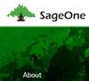 SageOne Investment Advisors LLP