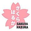 Sakura Haruka | Singapore Family Blog