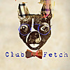 Club Fetch's Doggy Blog   Located in Charlotte, NC -