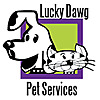 Lucky Dawg Salon Grooming