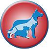 Zoomin Groomin   ECO-Friendly Pet Grooming Service