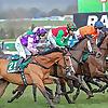 Dan Skelton Racing   Racehorse Trainer, Lodge Hill, Warwickshire