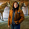 Horsemareship   Gentle Horse Trainer Missy Wryn