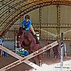 Case of Horse Addiction
