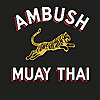 Ambush Muay Thai in Austin & San Antonio, TX