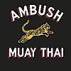 Ambush Muay Thai in Austin & San Antonio, TX