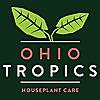 Ohio Tropics Houseplant