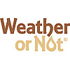 Weather or Not | News Bolts