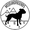 Mojoandfriends A blog about vanlife, sustainability and living a healthy life