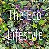 The Eco Lifestyle