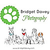 Bridget Davey Photography