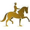 Quality Horses