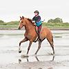 Shelby Dennis | Horseback Riding YouTube Channel