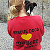 PAWS Animal Rescue   Dog and Donkey Rescue