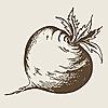 Urban Turnip | Urban Gardening & Container Growing