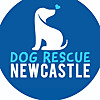 Dog Rescue Newcastle Australia