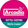 Arcadia Reptile