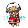 Tiffany chihuahuas and pomeranians - News