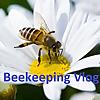 Beekeeping Vlog