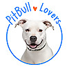 Pit Bull Information Your complete online resource