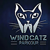 WINDCATZ Parkour and Freerunning