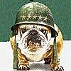 Barking Bootcamp