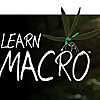 Learn Macro   Macro Photography Ramblings and Observations from Across the Pond by Paul Harcourt Dav