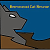 Browncoat Cat Rescue