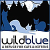 Wild Blue Cats A Refuge For Cats & Kittens