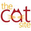 TheCatSite| Ferals & Rescue