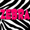 Zebra Nursery Rhymes - Kindergarten Songs for Kids